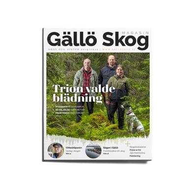 Case: Gällö Skog – ett uppdrag som växte